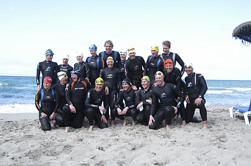Synkroniserad simning och kampsportsdag