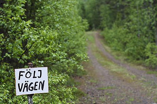 130615_niliterrängen_L072