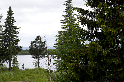130615_niliterrängen_S032