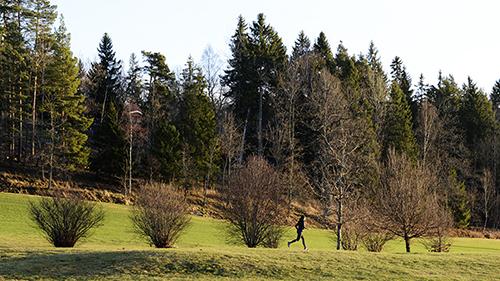 131229_golfrunning20131229_0455