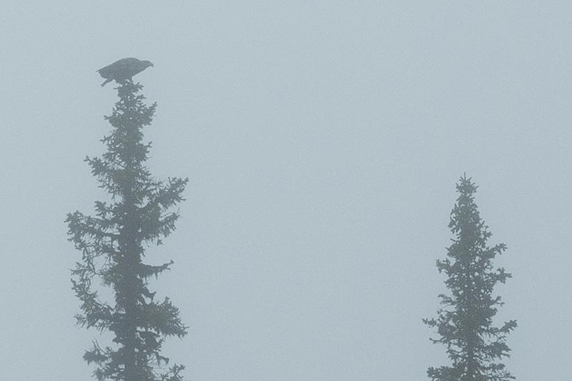 170928_skierfe0027