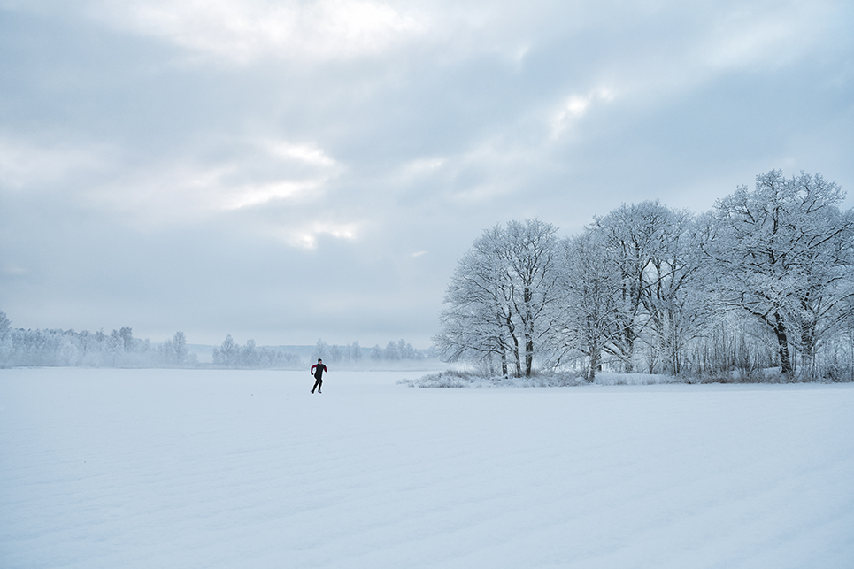 Run_Vinter_Rydboholm_190125_104